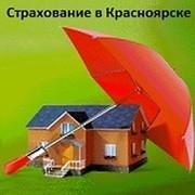 Smartterminal- страхование (Красноярск): ОСАГО, КАСКО, Антиклещ* группа в Моем Мире.