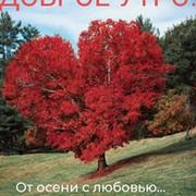 Юлия Дворянчикова on My World.