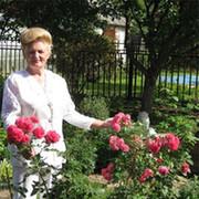 Лилия  Фёдоровна Корниенко on My World.