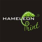 Рекламное агентство Hameleon print on My World.